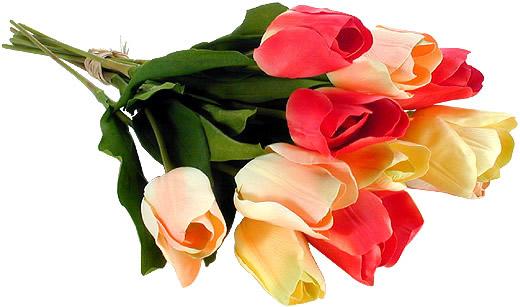Bouquet de tulipes roses et jaunes