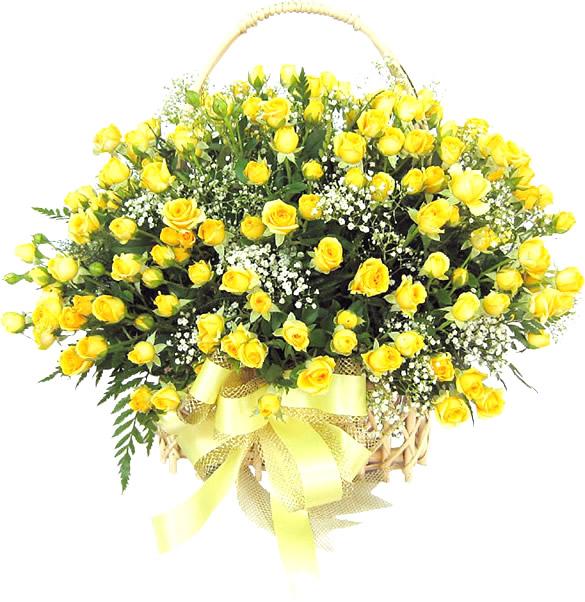Bouquet de roses jaunes