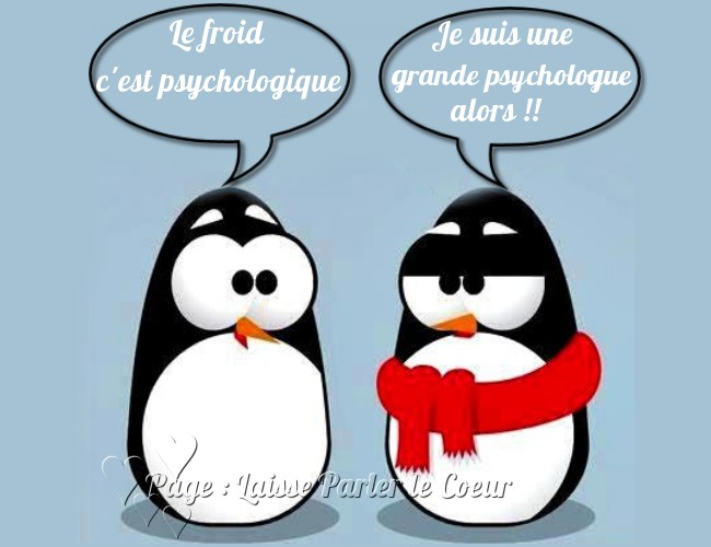 Froid image 7