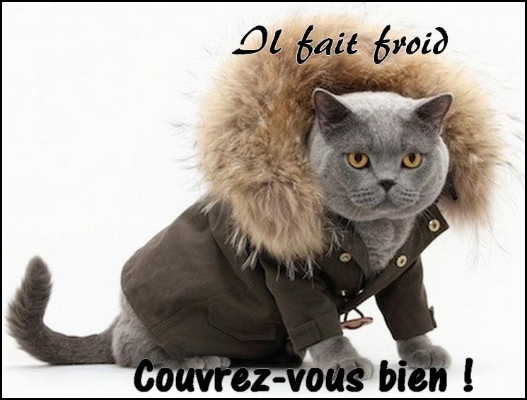 Il fait froid, couvrez-vous bien !