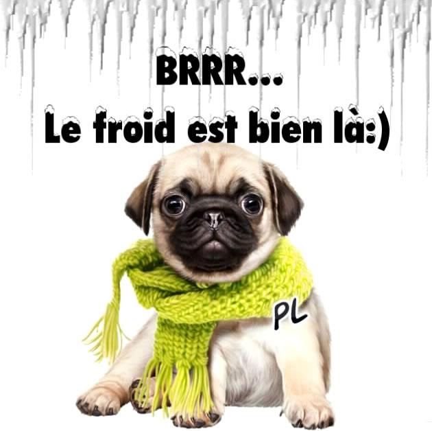 BRRR...le froid est bien là :)