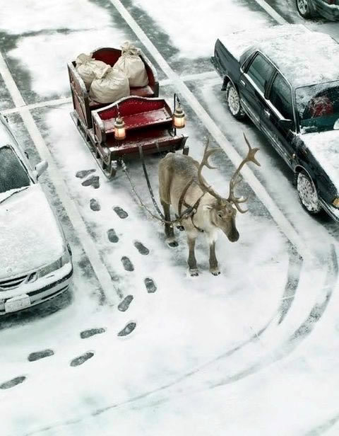 Humour Noël image #8122