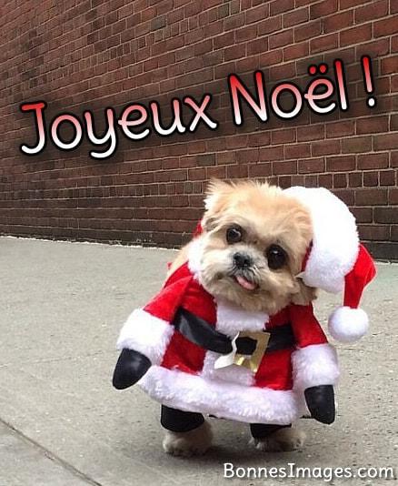 Humour Noël image 11
