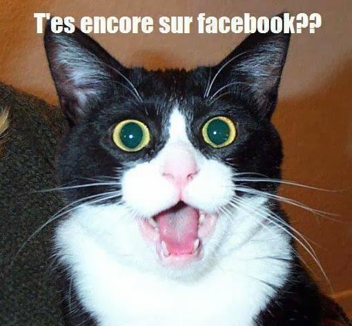 T'es encore sur facebook ??