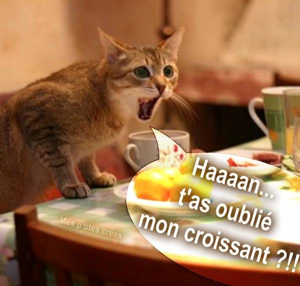 Haaaan... t'as oublié mon croissant ?!!