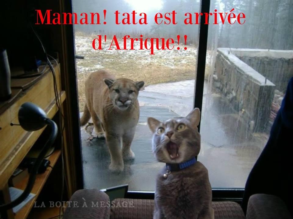 Maman! tata est arrivée d'Afrique!!