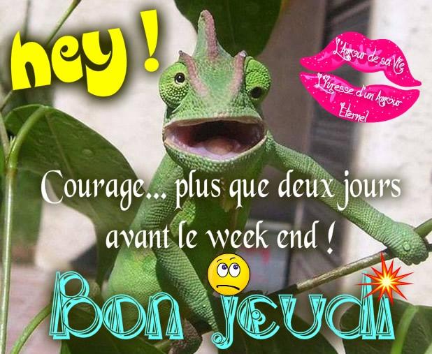 Hey! Courage... plus que deux jours avant le week end! Bon jeudi