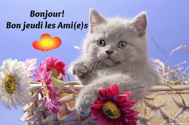 Bonjour! Bon jeudi les Ami(e)s