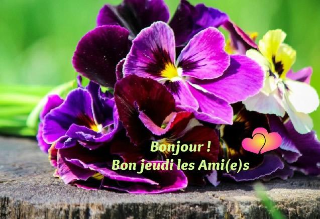 Bonjour ! Bon jeudi les Ami(e)s