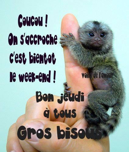Coucou On S Accroche C Est Bientot Le Week End Image 6661