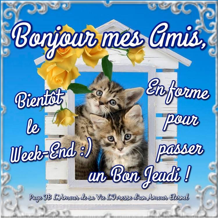 Bonjour mes amis, Bientot le Week-End :)