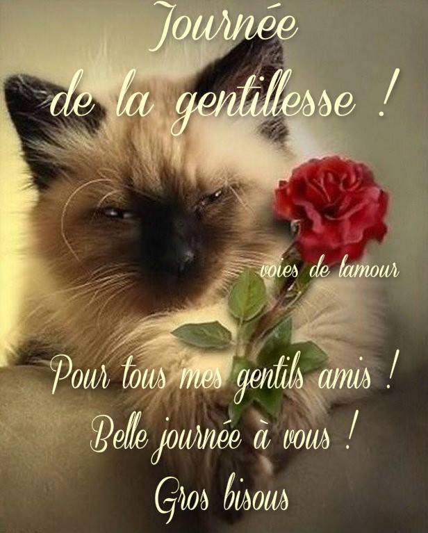 Journée de la gentillesse !