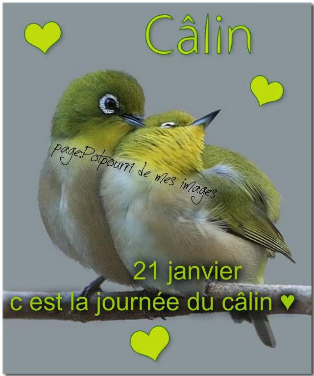journee-du-calin_003