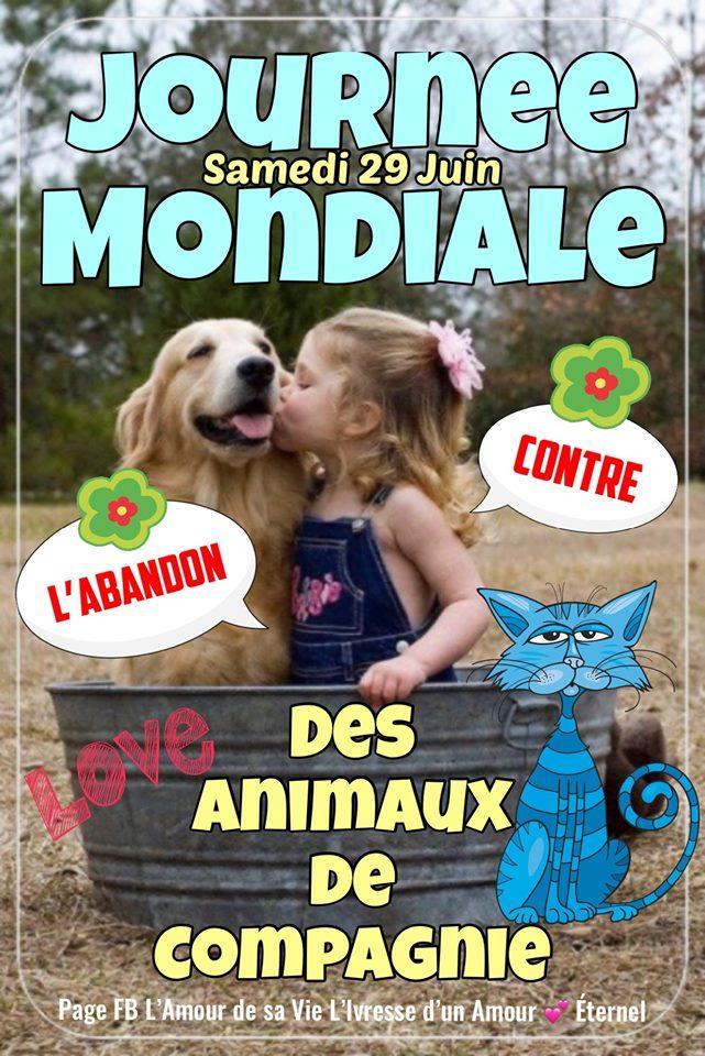 Journée Mondiale des Animaux de...