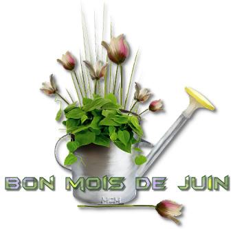 Bon Mois de Juin