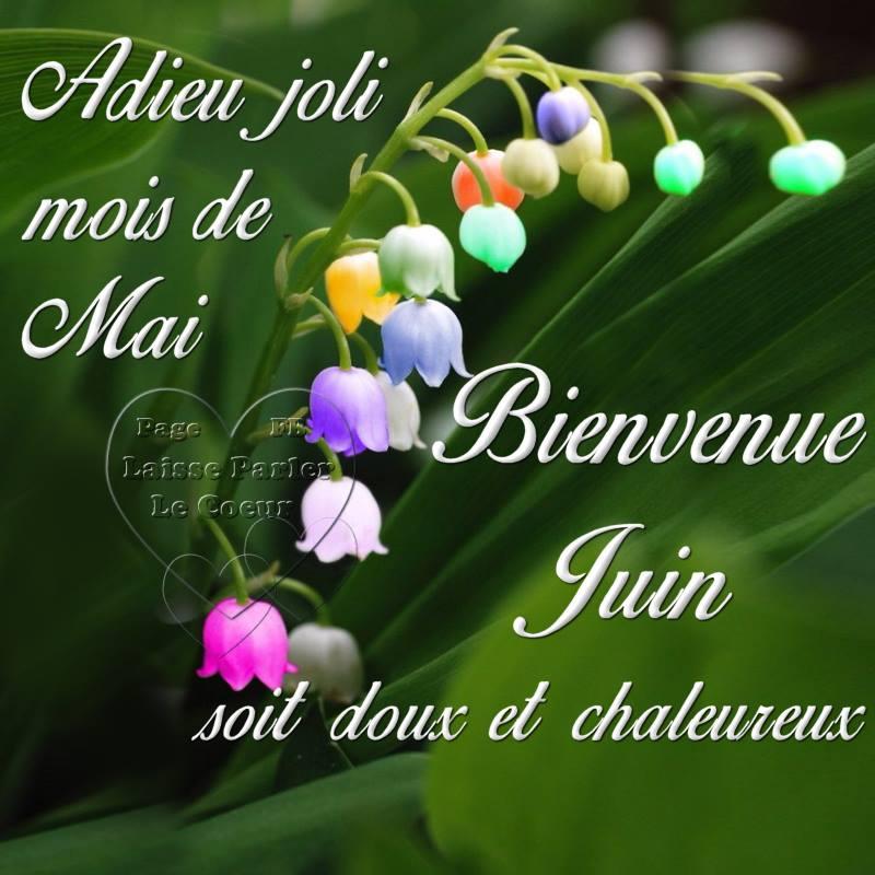 Adieu joli mois de Mai, Bienvenue Juin