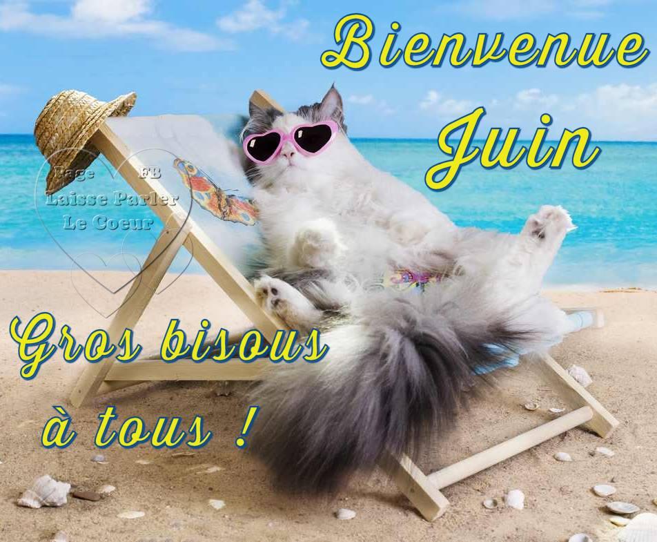 Bienvenue Juin. Gros bisous à tous !