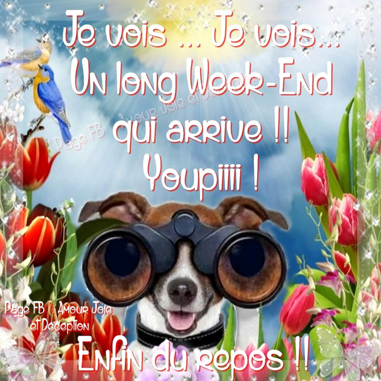 Je vois... Je vois... Un long week-end qui arrive !!