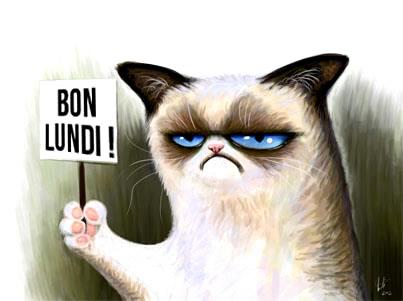 """Résultat de recherche d'images pour """"lundi humour"""""""