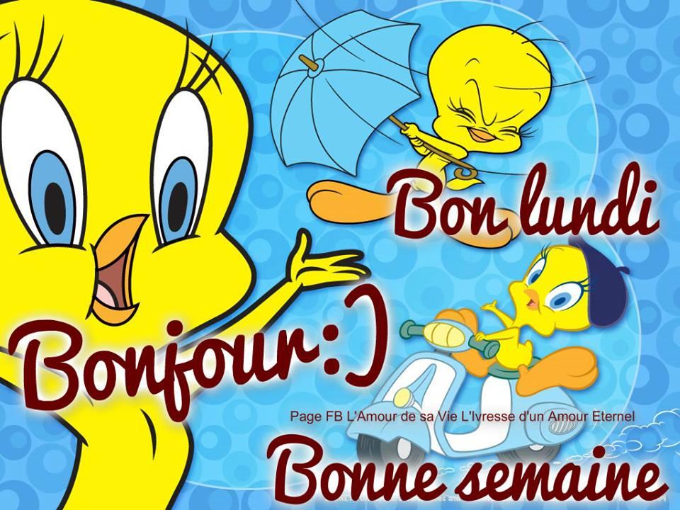 Bonjour :) Bon lundi, Bonne semaine
