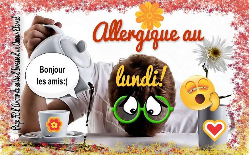 Allergique au lundi! Bonjour les amis :(