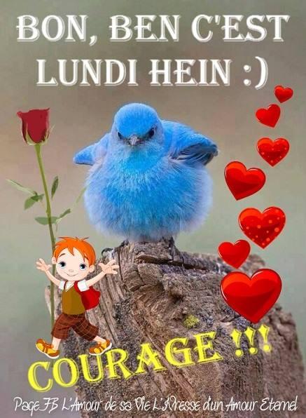 Bon, ben c'est lundi hein :) Courage !!!