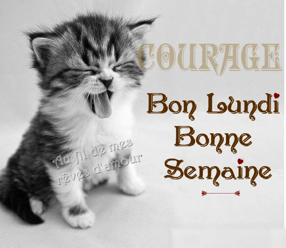 Courage, Bon Lundi, Bonne Semaine