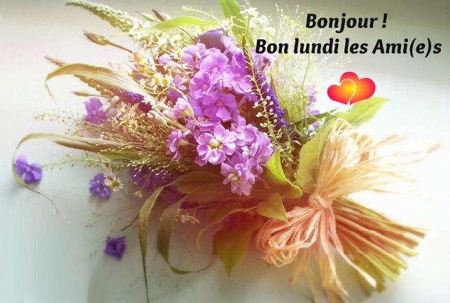 Bonjour ! Bon lundi les Ami(e)s