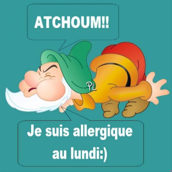 Atchoum!! Je suis allergique au lundi :)