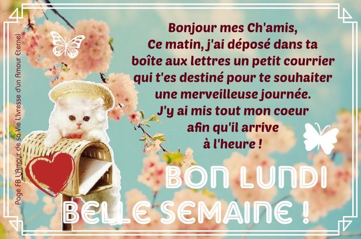 Bon Lundi, Belle Semaine !