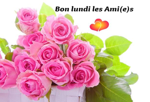 Bon lundi les Ami(e)s
