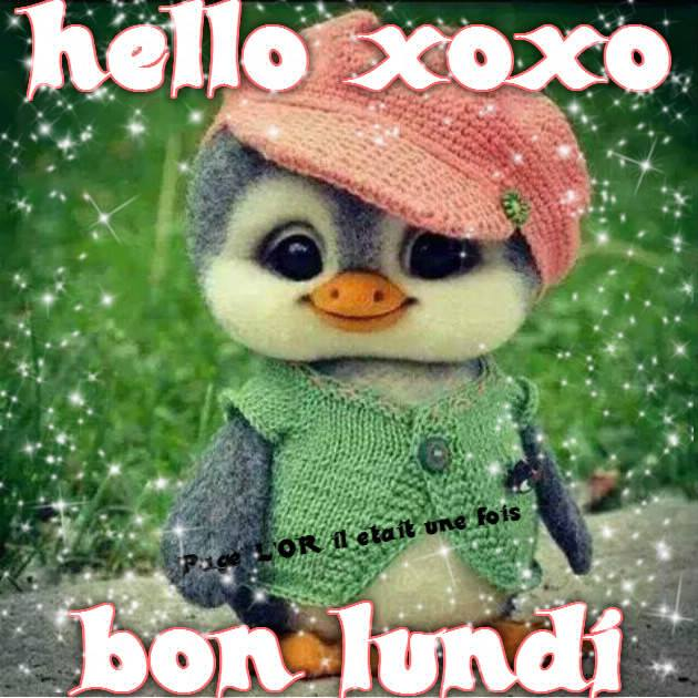 hello xoxo bon lundi