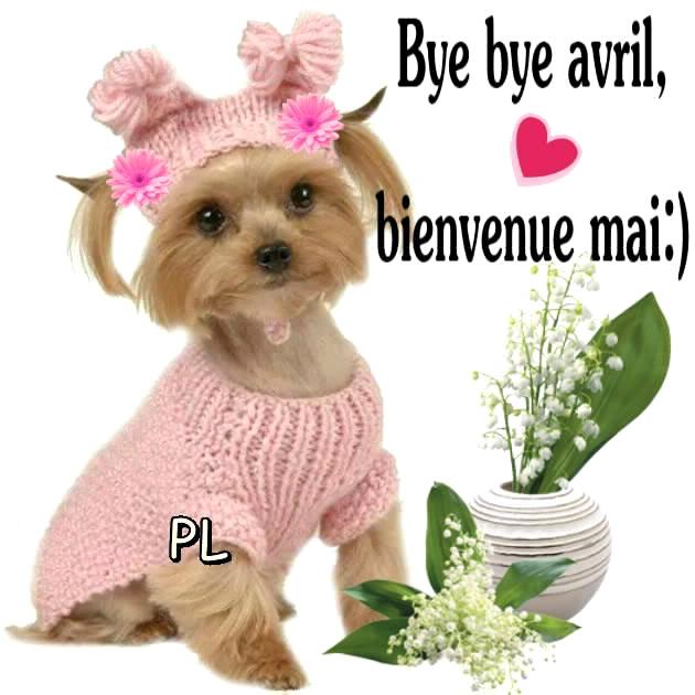 Bye bye avril, bienvenue mai :)