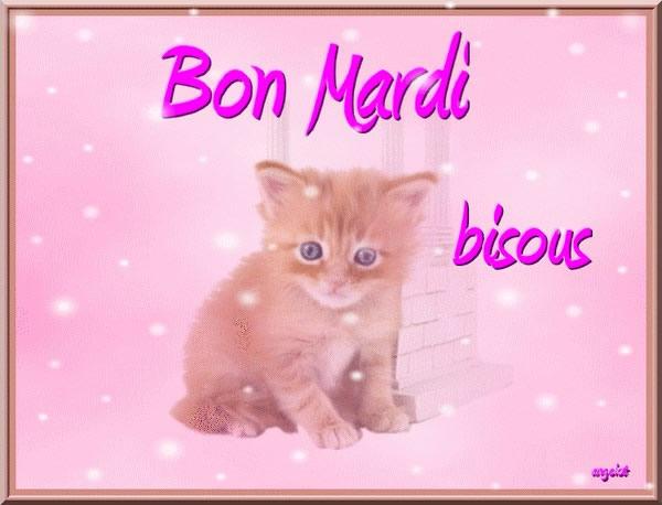 Image result for bon mardi image