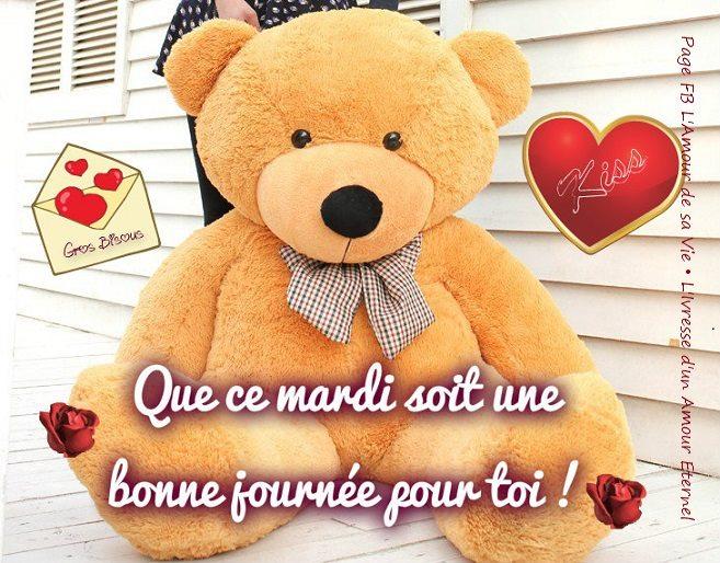 Bonjour  - Page 27 Mardi_035
