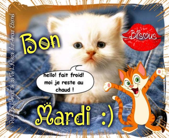 Bon Mardi :) Hello! fait froid! Moi je reste au chaud! bisous