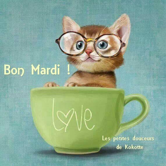 Bon Mardi !