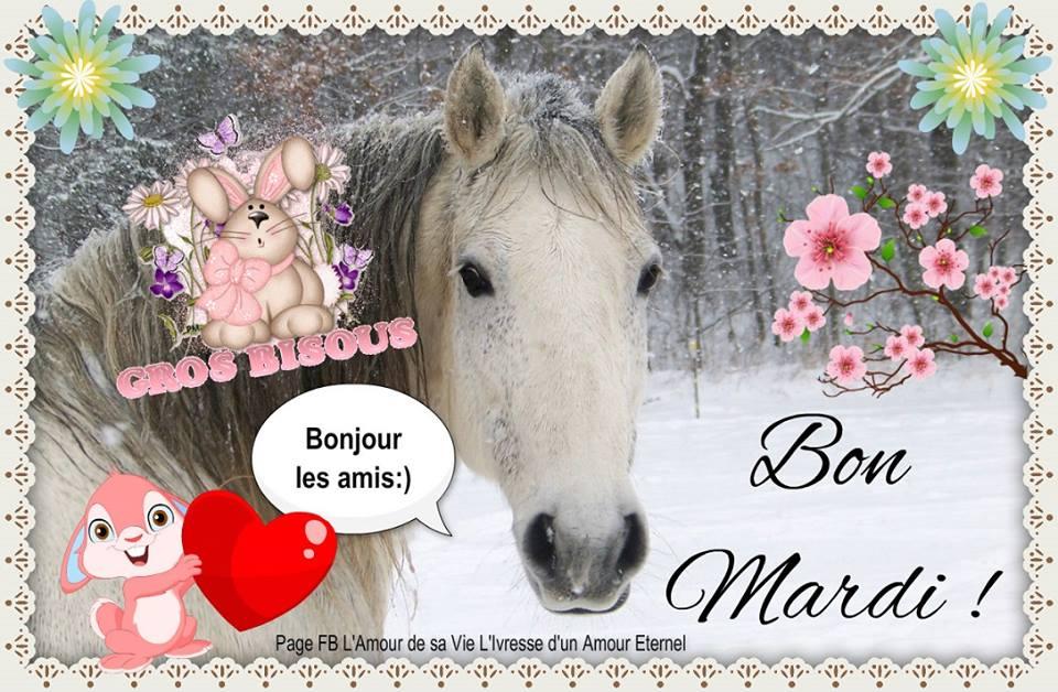 Bon Mardi ! Bonjour les amis :)