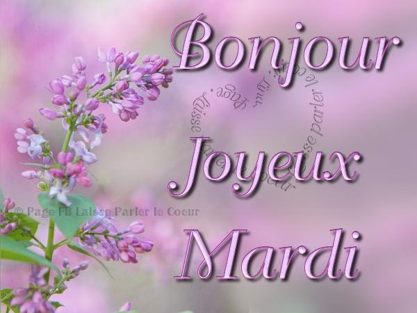 Images Mardi
