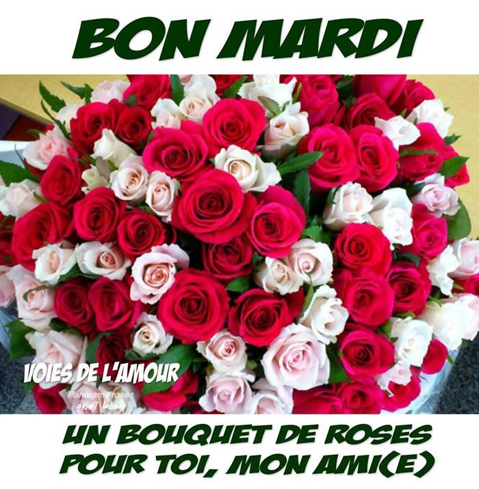 Bon Mardi. Un bouquet de roses pour toi...