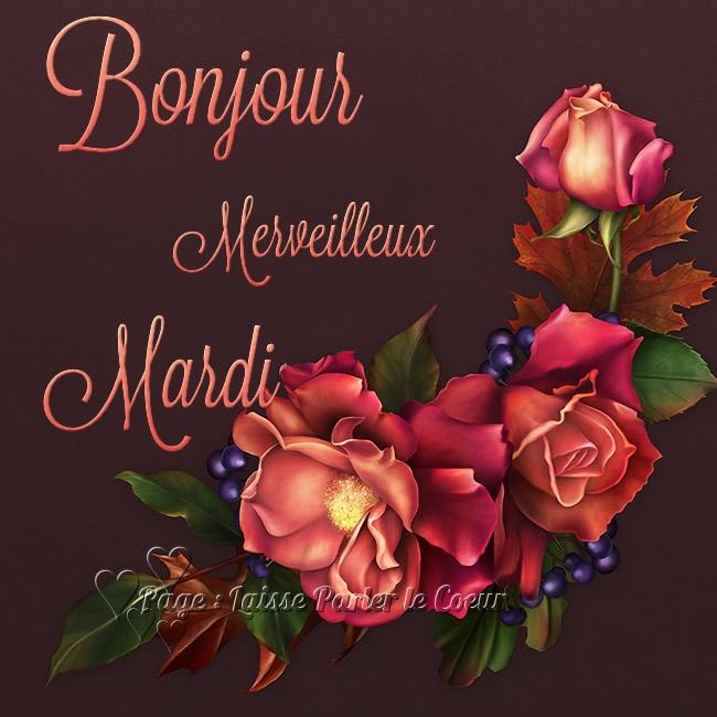 Bonjour, Merveilleux Mardi