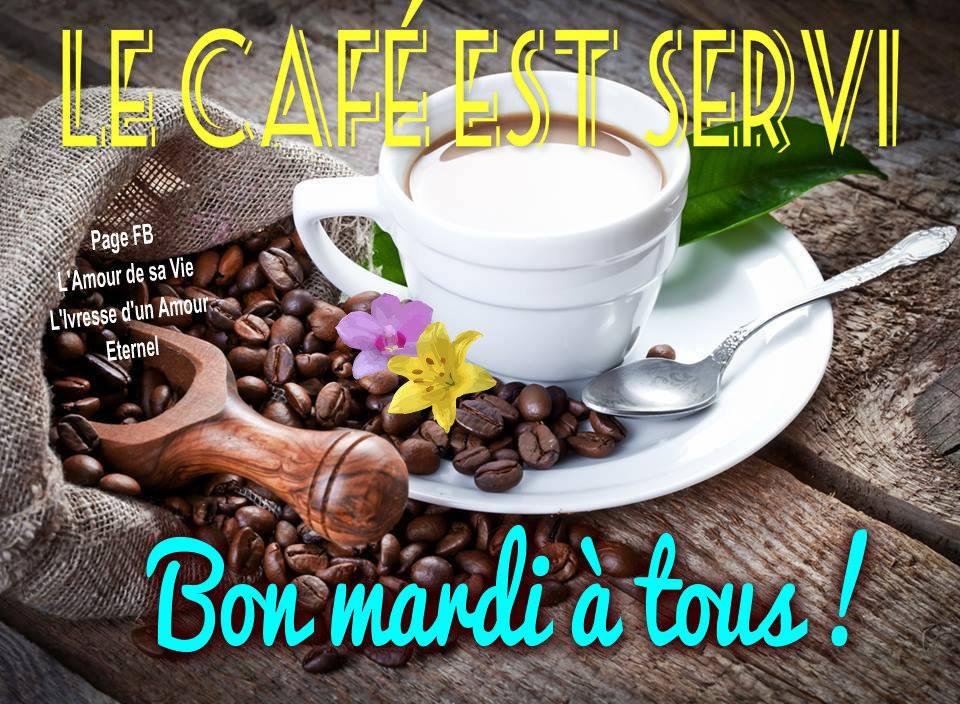 Le café est servi. Bon mardi à tous !