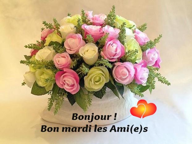 Bonjour ! Bon mardi les Ami(e)s