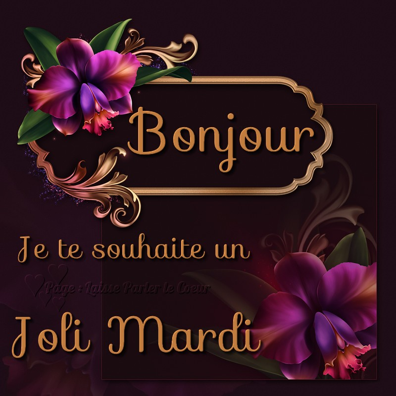 Bonjour, Je te souhaite un Joli Mardi