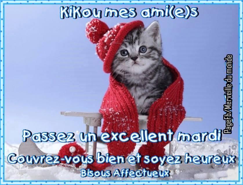 KIKI - ajonc - 20 février trouvé par Martine - Page 2 Mardi_096