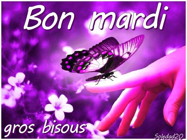 ᐅ Mardi images, photos et illustrations pour facebook (Page 5) -  BonnesImages