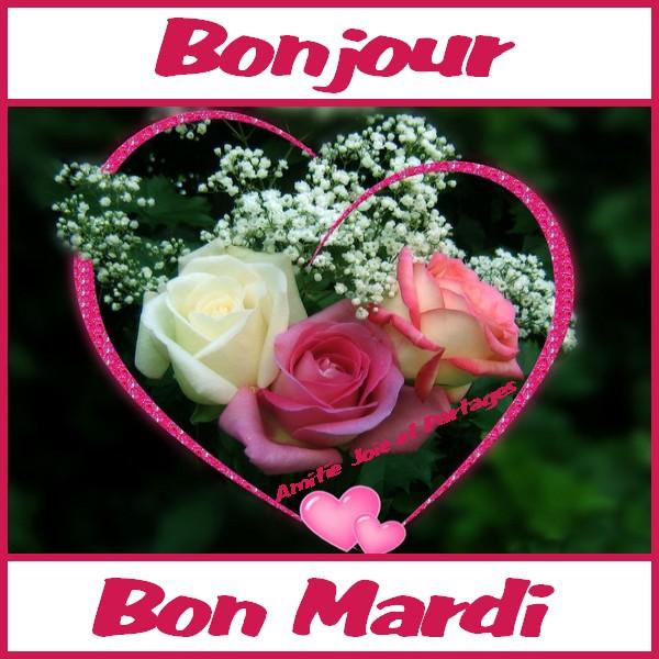 Mardi image 10