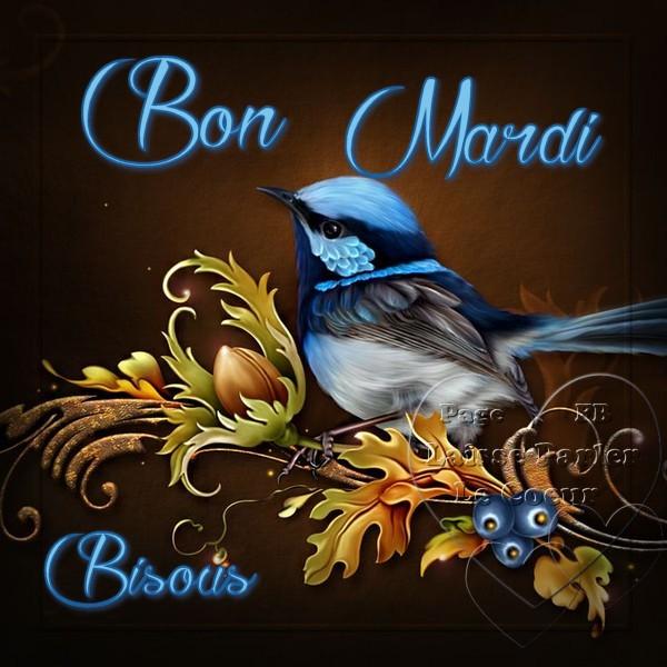 Bon Mardi, Bisous