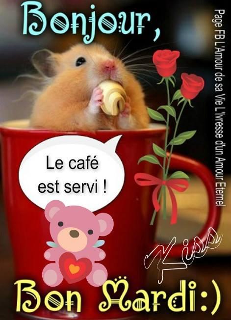 Bonjour, Bon Mardi :) Le café est servi...
