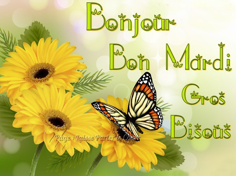 ᐅ Mardi images, photos et illustrations pour facebook (Page 2 ...